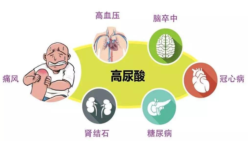痛风的症状表现有哪些?痛风性关节炎发作如何快速缓解疼痛?