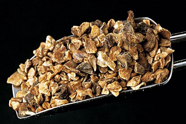 菊苣降尿酸的效果怎么样?要吃多久才能够达到降尿酸的效果?